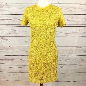 NWT Zara Chartruese Corded Lace Embroidered Dress